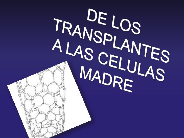 DE LOS TRANSPLANTES<br />A LAS CELULAS MADRE<br />