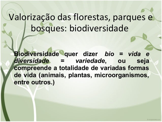 Valorização das florestas, parques e bosques: biodiversidade Biodiversidade quer dizer bio = vida e diversidade = variedad...