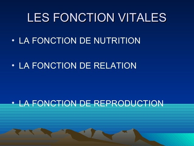 LLEESS FFOONNCCTTIIOONN VVIITTAALLEESS  • LA FONCTION DE NUTRITION  • LA FONCTION DE RELATION  • LA FONCTION DE REPRODUCTI...