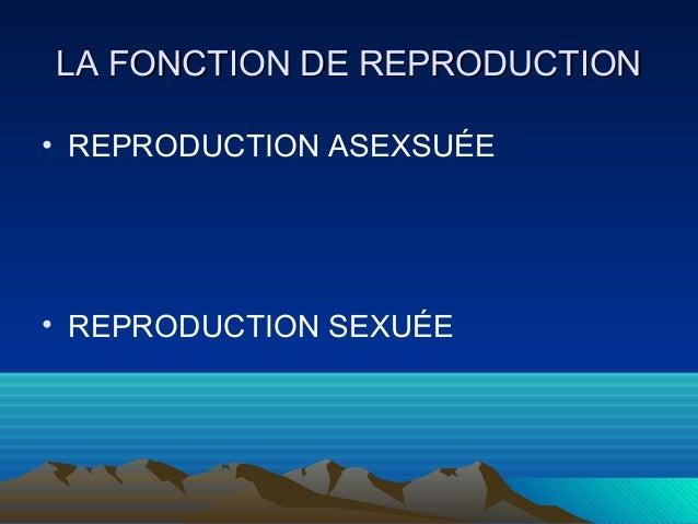 LLAA FFOONNCCTTIIOONN DDEE RREEPPRROODDUUCCTTIIOONN  • REPRODUCTION ASEXSUÉE  • REPRODUCTION SEXUÉE