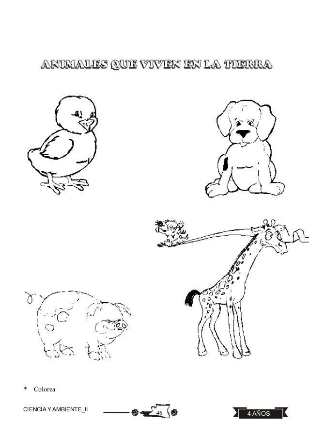 Perfecto Hojas Para Colorear De Animales De Granja Ilustración ...