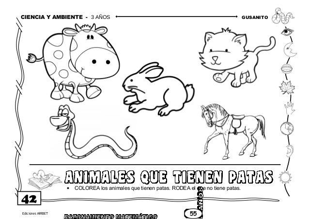 Animales De Cuatro Patas Para Colorear. Best Animales De Cuatro ...