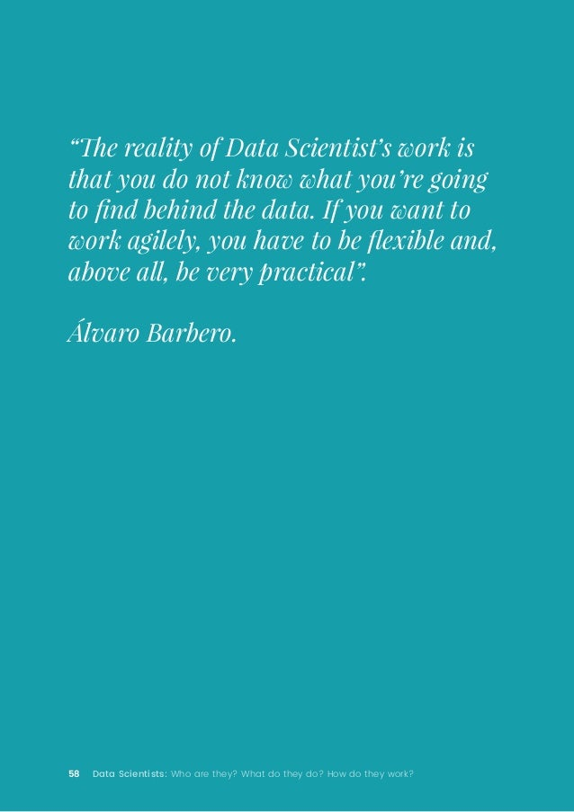 """58 Data Scientists: Who are they? What do they do? How do they work? """"The reality of Data Scientist's work is that you do ..."""