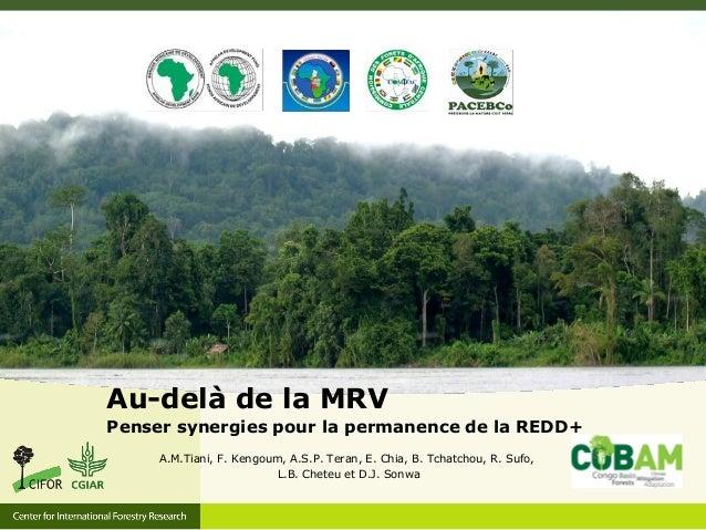 Au-delà de la MRV Penser synergies pour la permanence de la REDD+ A.M.Tiani, F. Kengoum, A.S.P. Teran, E. Chia, B. Tchatch...