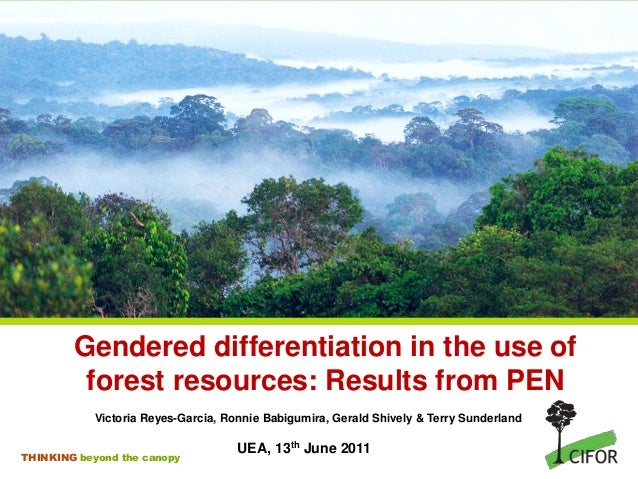 THINKING beyond the canopy Gendered differentiation in the use of forest resources: Results from PEN Victoria Reyes-Garcia...