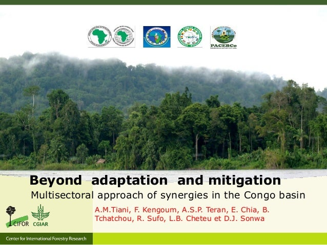 Beyond adaptation and mitigation Multisectoral approach of synergies in the Congo basin A.M.Tiani, F. Kengoum, A.S.P. Tera...
