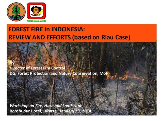 FOREST FIRE in INDONESIA: REVIEW AND EFFORTS (based on Riau Case)  By: Director of Forest Fire Control DG. Forest Protecti...