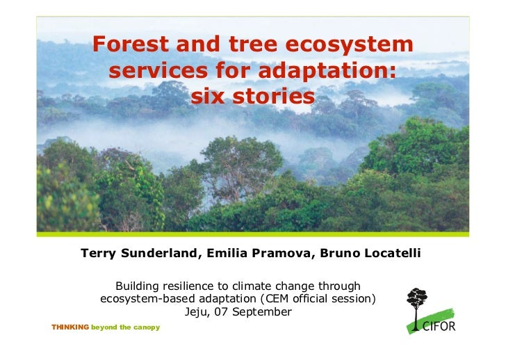 Forest and tree ecosystem          services for adaptation:                 six stories       Terry Sunderland, Emilia Pra...