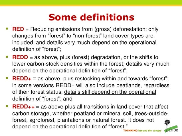 biodiversity and afforestation Water, biodiversity, landscape, social issues, etc the environmental requirements for afforestation replace those measures relating to afforestation contained within the following forest service environmental guidelines: forestry & water quality.