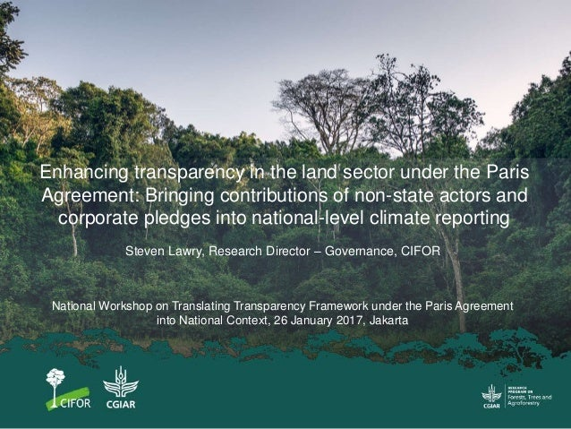 Enhancing transparency in the land sector under the Paris Agreement: Bringing contributions of non-state actors and corpor...