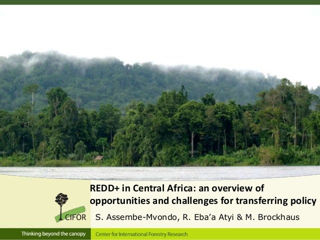REDD+ in Central Africa: an overview of opportunities and challenges for transferring policy S. Assembe-Mvondo, R. Eba'a A...