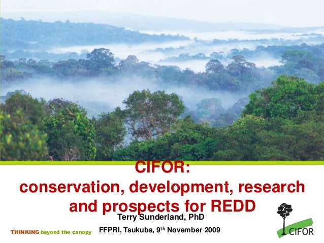 CIFOR: conservation, development, research and prospects for REDD Terry Sunderland, PhD THINKING beyond the canopy  FFPRI,...