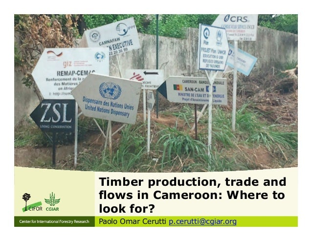 Timber production, trade and  flows in Cameroon: Where to  look for?  Paolo Omar Cerutti p.cerutti@cgiar.org