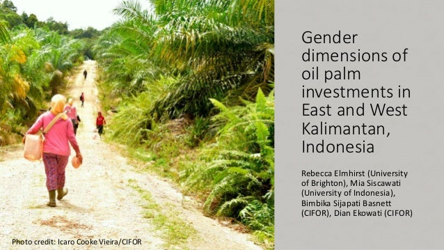 Gender dimensions of oil palm investments in East and West Kalimantan, Indonesia Rebecca Elmhirst (University of Brighton)...