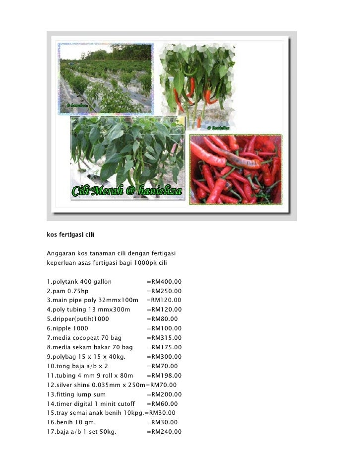 kos fertigasi cili   Anggaran kos tanaman cili dengan fertigasi keperluan asas fertigasi bagi 1000pk cili   1.polytank 400...