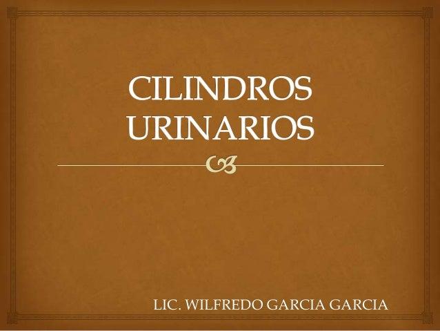 LIC. WILFREDO GARCIA GARCIA