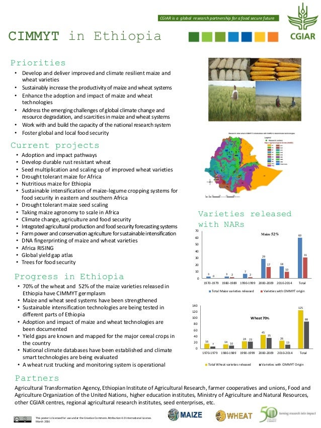 CIMMYT in Ethiopia Pictures CGIAR is a global research partnership for a food secure future Priorities • Develop and deliv...