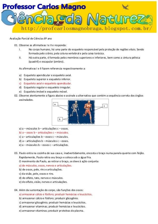 Avaliação Parcial de Ciências 8º ano 01. Observe as afirmativas I e II e responda: I. No corpo humano, há uma parte do esq...