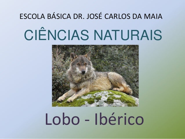 CIÊNCIAS NATURAIS Lobo - Ibérico ESCOLA BÁSICA DR. JOSÉ CARLOS DA MAIA
