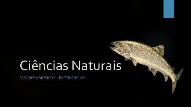 Ciências Naturais FATORES ABIÓTICOS – EXPERIÊNCIAS