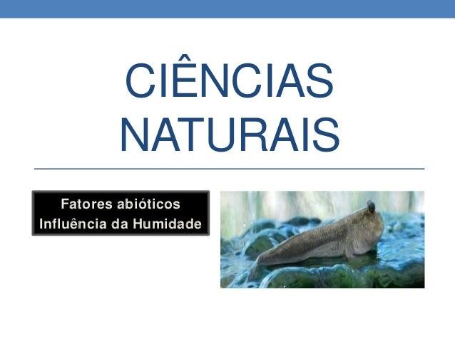 CIÊNCIAS NATURAIS Fatores abióticos Influência da Humidade