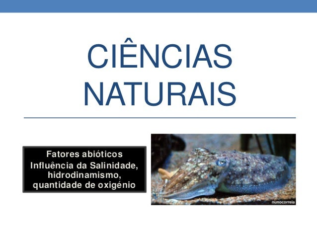 CIÊNCIAS NATURAIS Fatores abióticos Influência da Salinidade, hidrodinamismo, quantidade de oxigénio