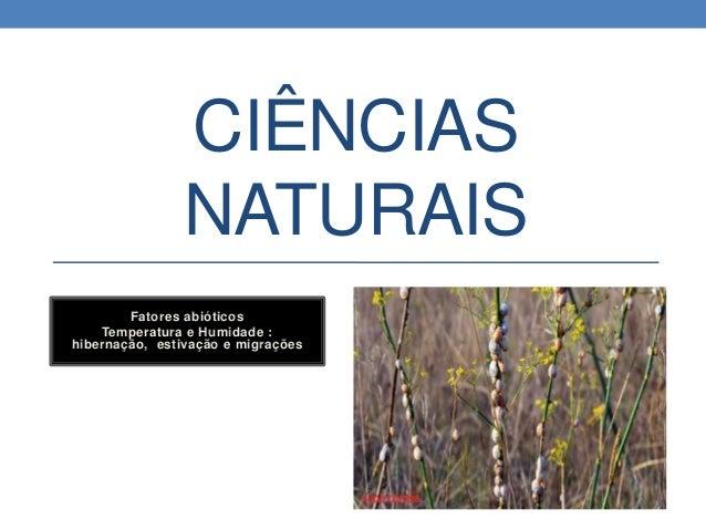 CIÊNCIAS NATURAIS Fatores abióticos Temperatura e Humidade : hibernação, estivação e migrações