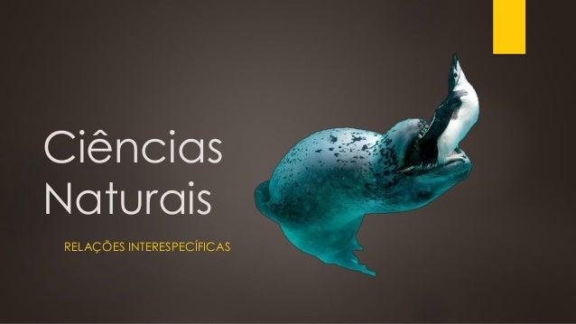 Ciências Naturais RELAÇÕES INTERESPECÍFICAS