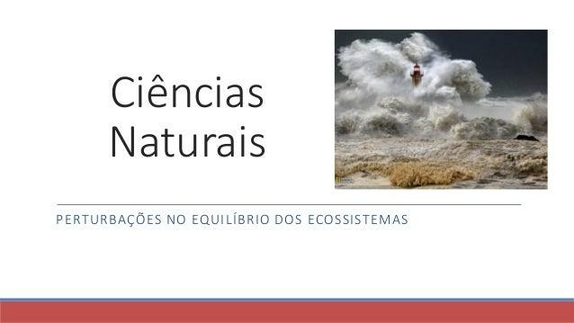 Ciências Naturais PERTURBAÇÕES NO EQUILÍBRIO DOS ECOSSISTEMAS