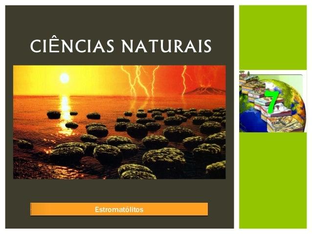 CIÊNCIAS NATURAIS                       7      Estromatólitos