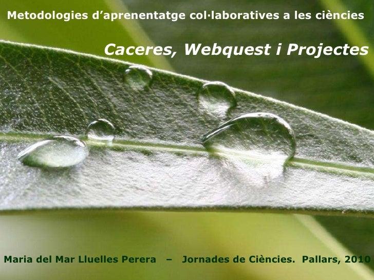 Metodologies d'aprenentatge col·laboratives a les ciències Maria del Mar Lluelles Perera  –  Jornades de Ciències.  Pallar...
