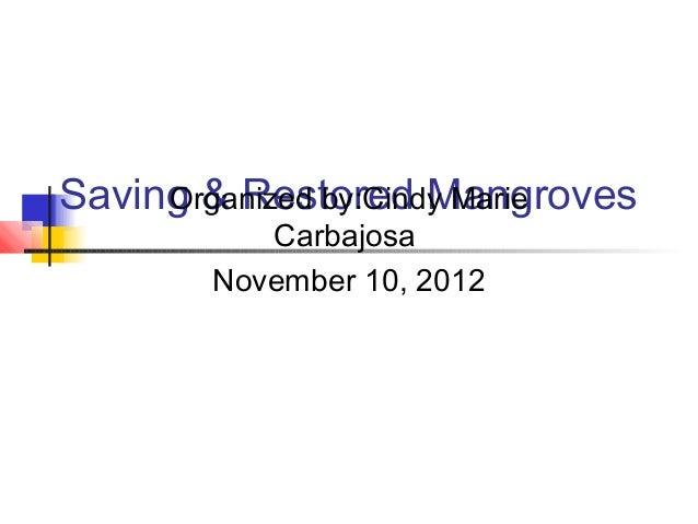 Saving & Restored Mangroves     Organized by:Cindy Marie          Carbajosa       November 10, 2012