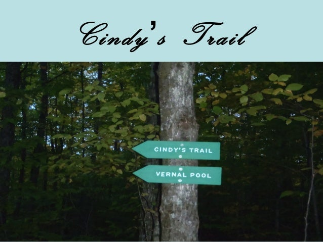 Cindy's Trail