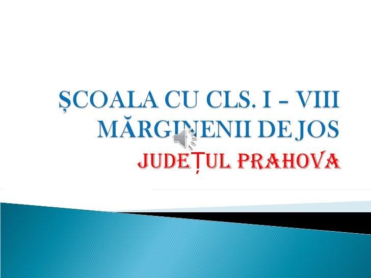 JUDEȚUL PRAHOVA