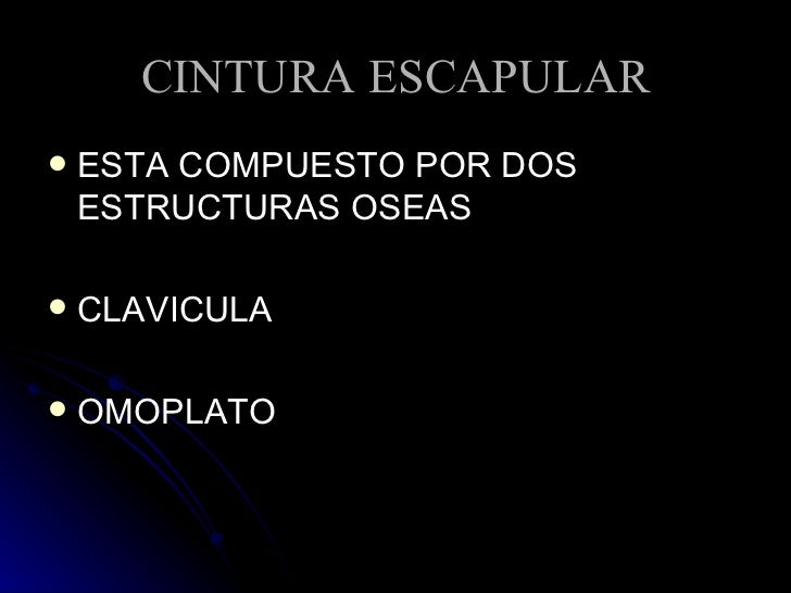 CINTURA ESCAPULAR <ul><li>ESTA COMPUESTO POR DOS ESTRUCTURAS OSEAS </li></ul><ul><li>CLAVICULA </li></ul><ul><li>OMOPLATO ...