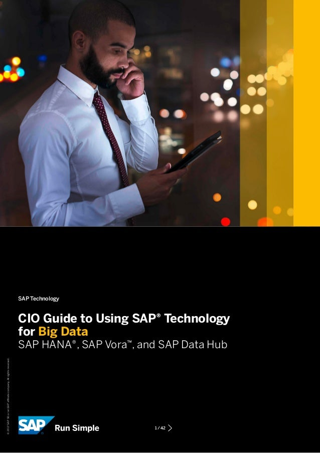 Cio guide to using sap® technology for big data.