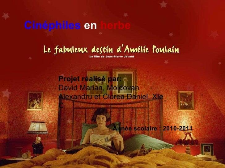 Cinéphiles   en   herbe Année scolaire: 2010-2011 P rojet réalisé par:  David Marian, Moldovan Alexandru et Ciorea Daniel...