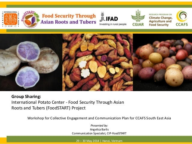 Group Sharing: International Potato Center - Food Security Through Asian Roots and Tubers (FoodSTART) Project OVERVIEW Pre...