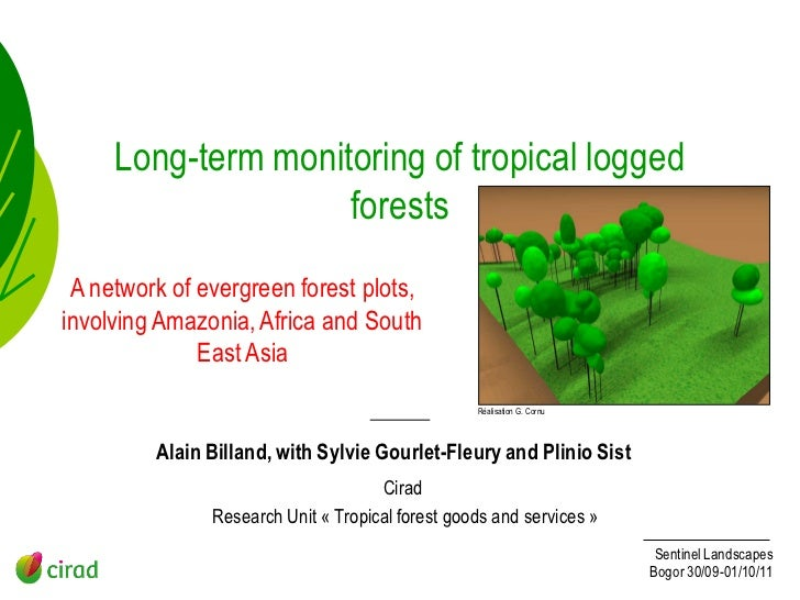 Long-term monitoring of tropical logged                    forests A network of evergreen forest plots,involving Amazonia,...