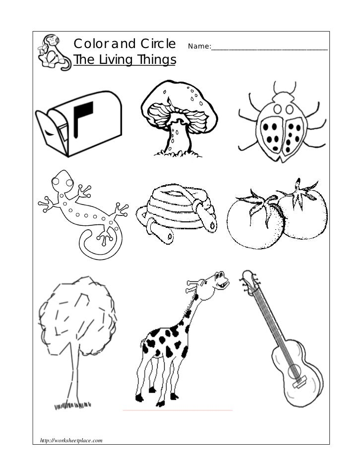Free Worksheets worksheet of living and nonliving things : Exercise 1 :Circle the-living-things
