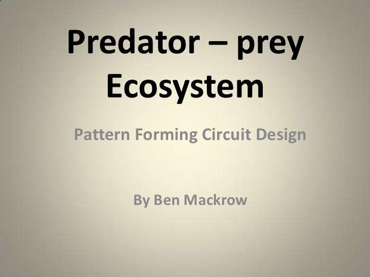 Predator – prey Ecosystem<br />Pattern Forming Circuit Design<br />                                                       ...
