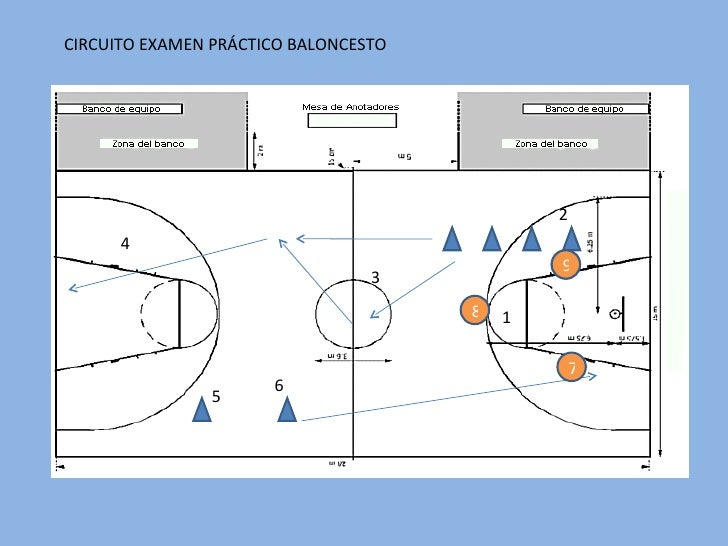 Circuito Motriz : Circuito baloncesto