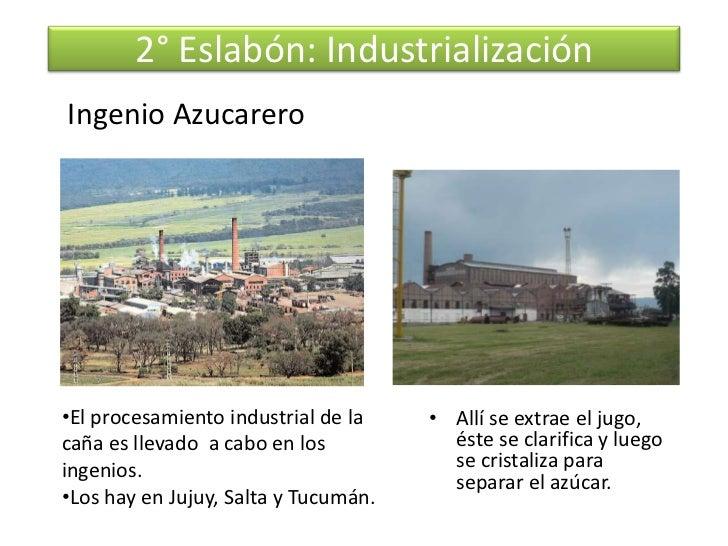 Circuito Productivo De La Caña De Azucar : Proceso de la caña azúcar