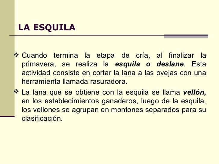 Circuito Productivo De La Lana : Circuito de la lana patagonia