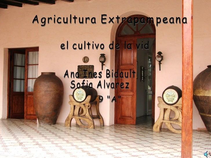 "Agricultura Extrapampeana el cultivo de la vid Ana Ines Bidault Sofia Alvarez 9 ""A"""