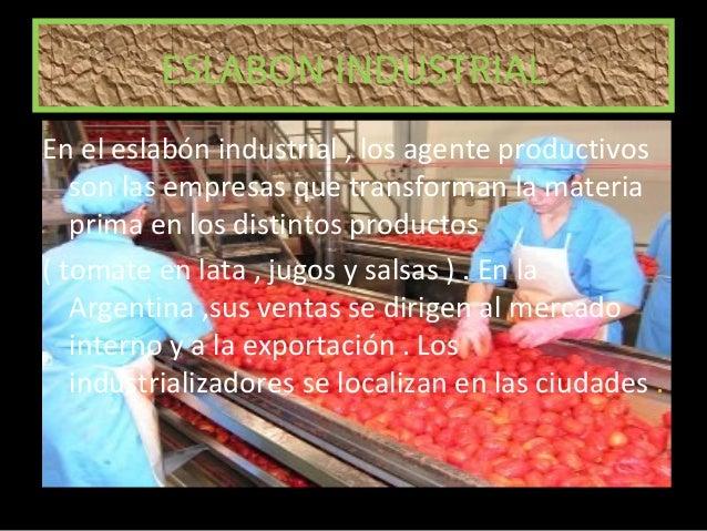 Schema Elettrico Frigorifero Whirlpool : El circuito productivo del tomate para niños ciclos