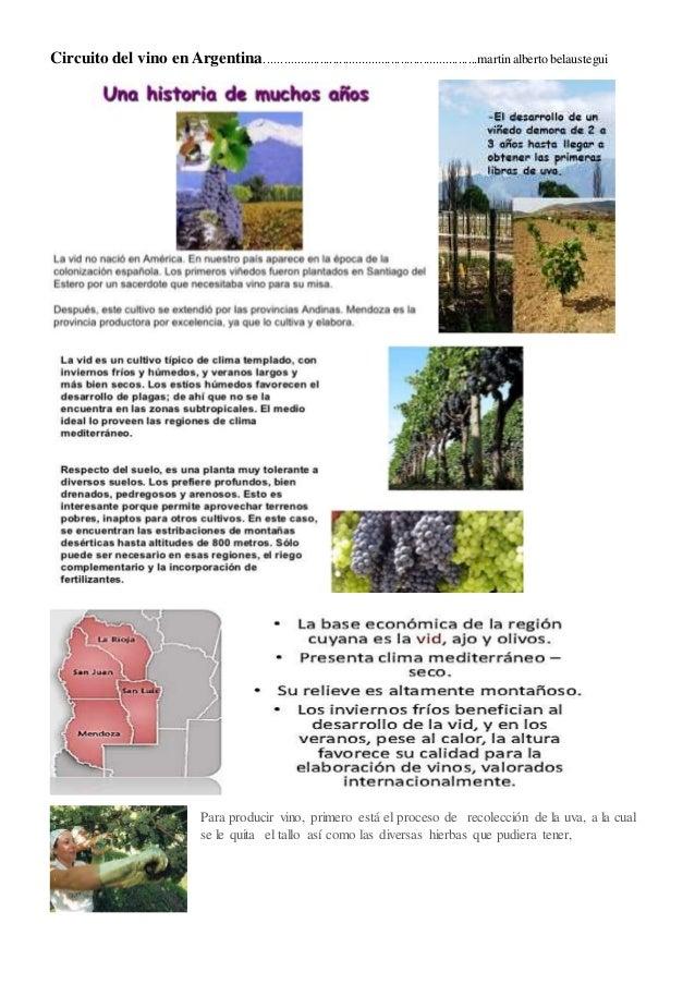 Circuito Yerbatero Argentina : Circuito productivo de vino en argentina