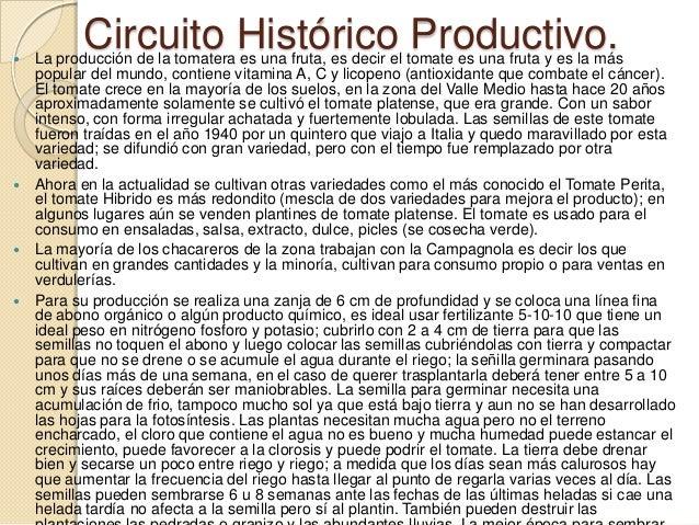 Circuito Productivo Del Tomate : Circuito histórico productivo