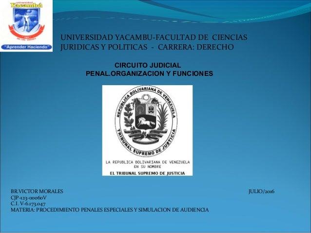 Circuito Judicial : Circuito judicial penal organizacion