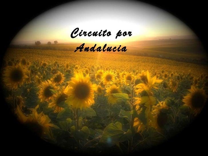 Circuito por Andalucia